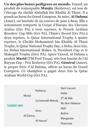 Le compteur de victoires : 2782, Yazeed, 16/09/18 Yazee510