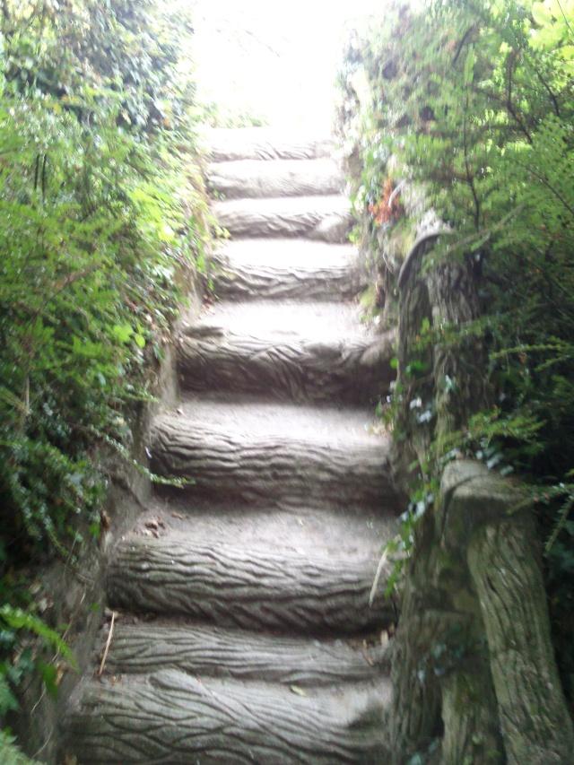 Un jardin pour la cascade Photo010