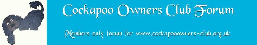 COCKAPOO OWNERS FORUM