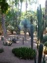 Mini-séjour à Marrakech P1020121