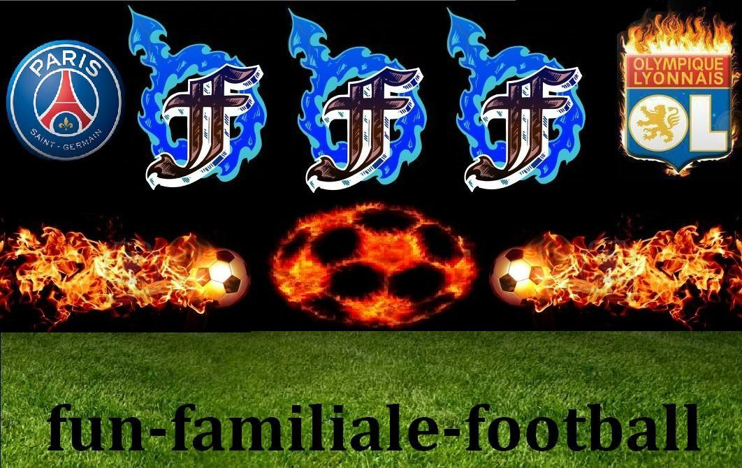 ~Fun Familiale Football~