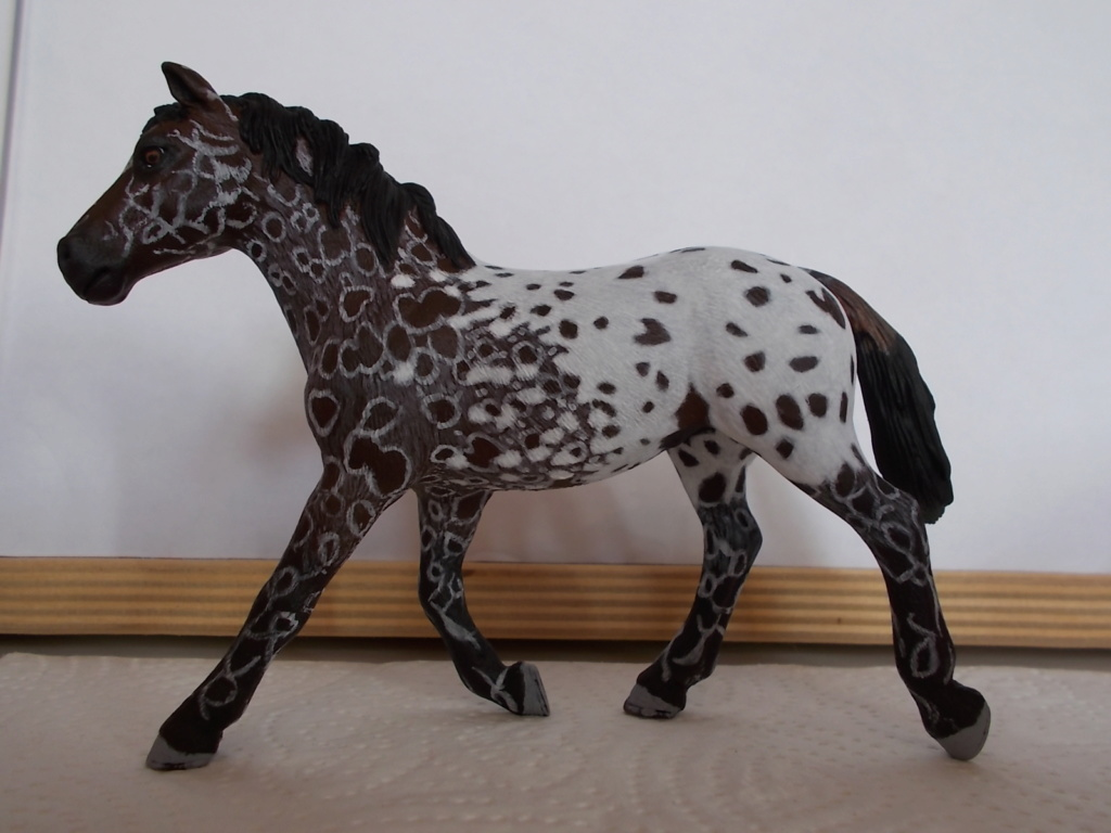 I started with repainting - Schleich horses - Page 4 Appalo10