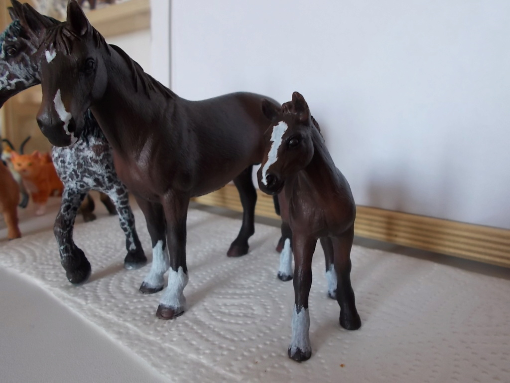 I started with repainting - Schleich horses - Page 7 Hanno_13