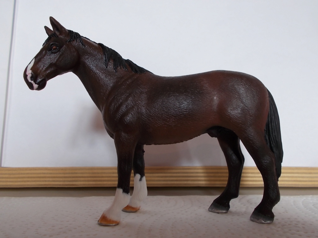 I started with repainting - Schleich horses - Page 4 Hanno_21