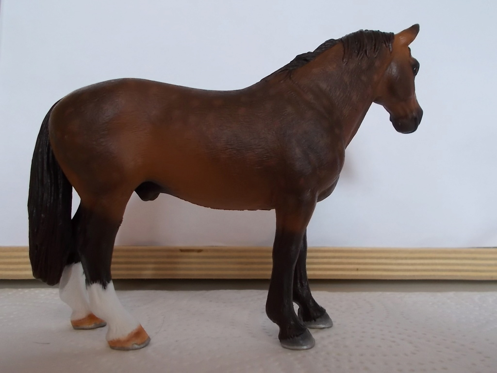 I started with repainting - Schleich horses - Page 7 Hannov11
