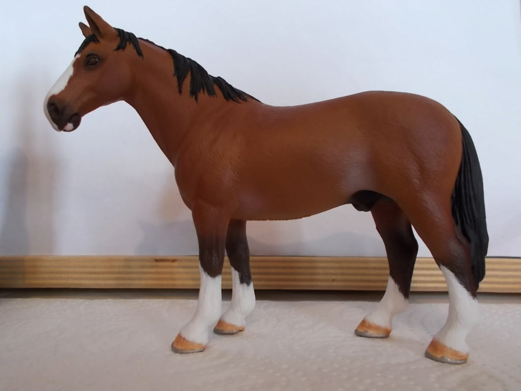 I started with repainting - Schleich horses - Page 4 Hannov13