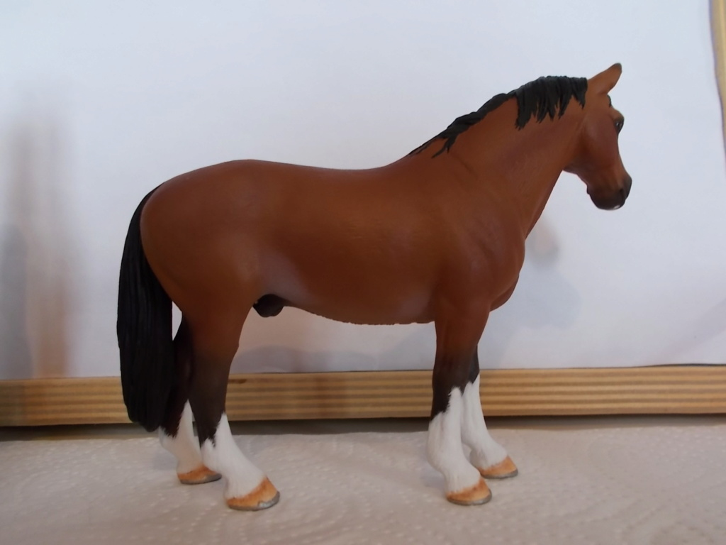 I started with repainting - Schleich horses - Page 8 Hannov14