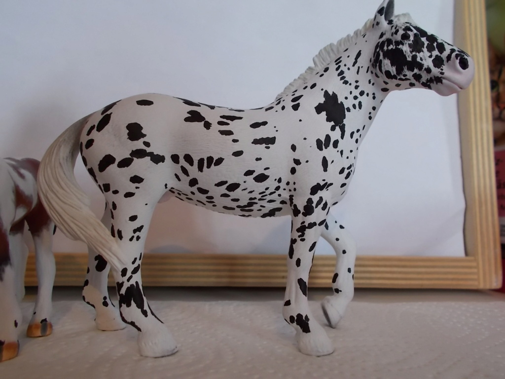 I started with repainting - Schleich horses - Page 4 Knabst16