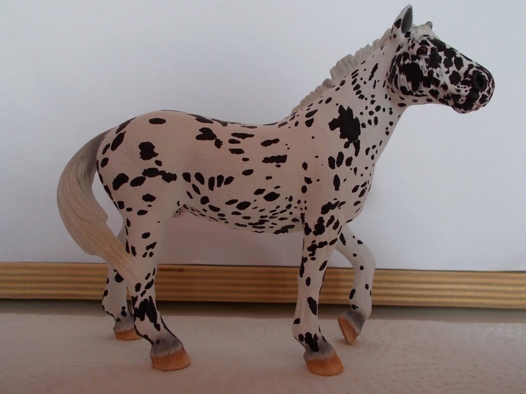 I started with repainting - Schleich horses - Page 4 Knabst18