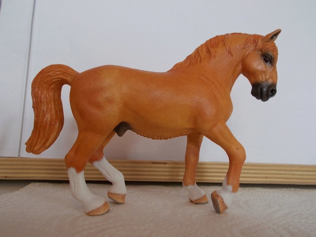 I started with repainting - Schleich horses - Page 4 Lipizz13
