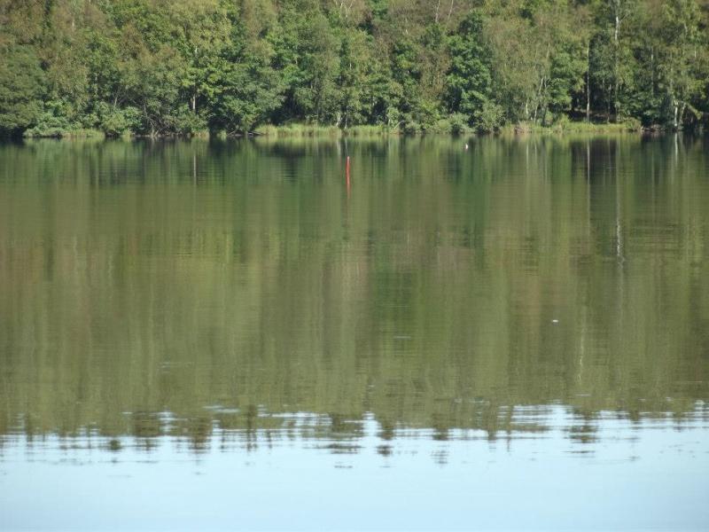 photo du lac des vieilles forges 31411010