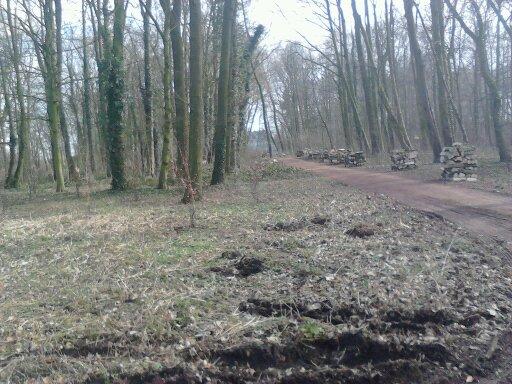 parc du Chateau - Arc Gn 13625711