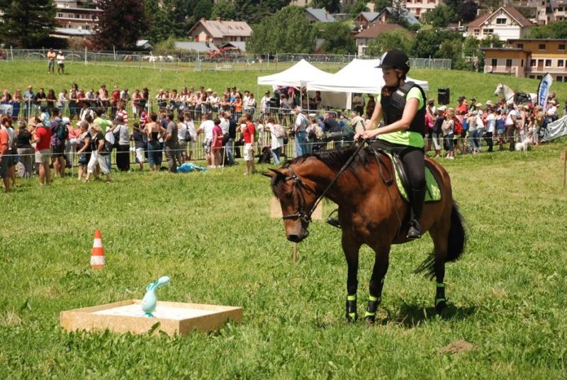 Equi'Festival à Villard-de-Lans 2ème édition – les 6 et 7 juillet 2013 - LE PROGRAMME!! 24791410
