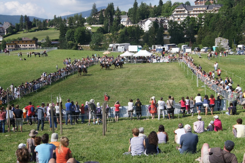 Equi'Festival à Villard-de-Lans 2ème édition – les 6 et 7 juillet 2013 - LE PROGRAMME!! Dsc03710