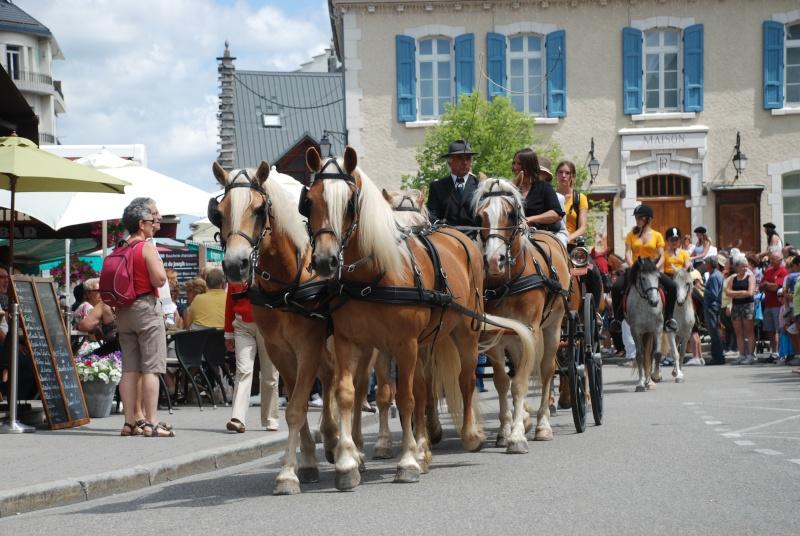 Equi'Festival à Villard-de-Lans 2ème édition – les 6 et 7 juillet 2013 - LE PROGRAMME!! Dsc_0410