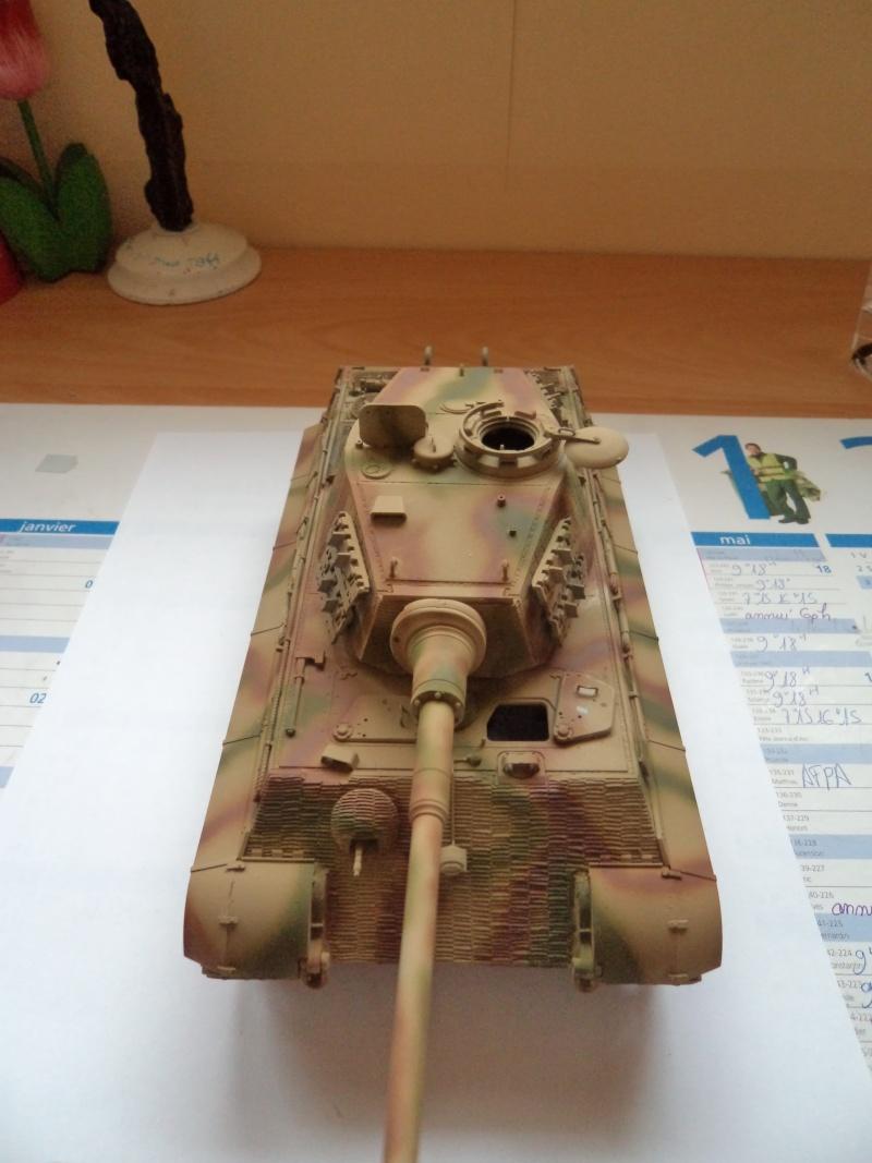 Me revoila avec un Tigre II (Dragon 1/35) - Page 2 Dsc01318