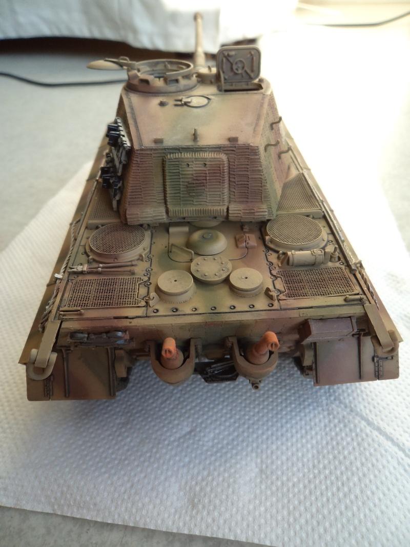 Me revoila avec un Tigre II (Dragon 1/35) - Page 2 Dsc01323