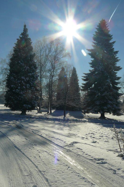"""Déficoncours """"silhouettes hivernales"""" - les participations 10888710"""