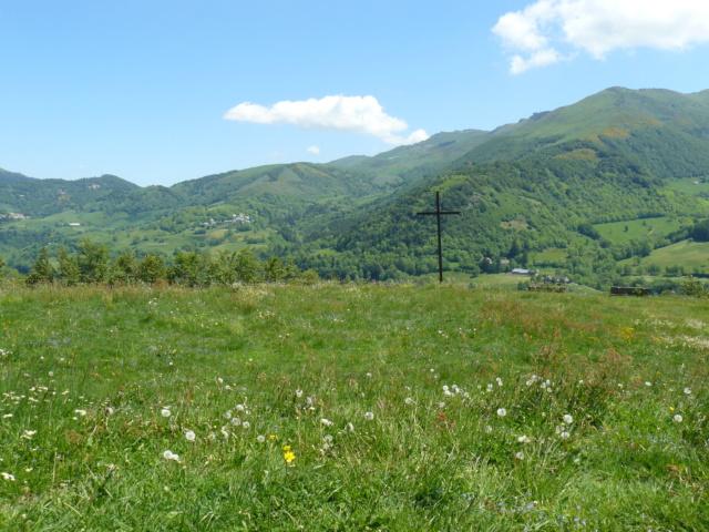 Balades dans le vert Cantal - Page 2 P1060613