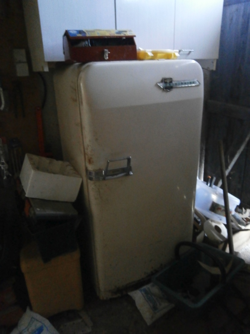 mon ex frigo - Page 2 P2180011