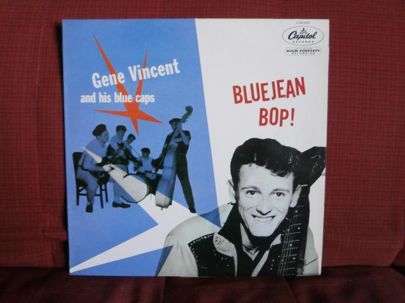Les albums 33 tours classiques du rock des 1950's et 1960's - Classic Lp's of 1950's and 1960's rock P2190010