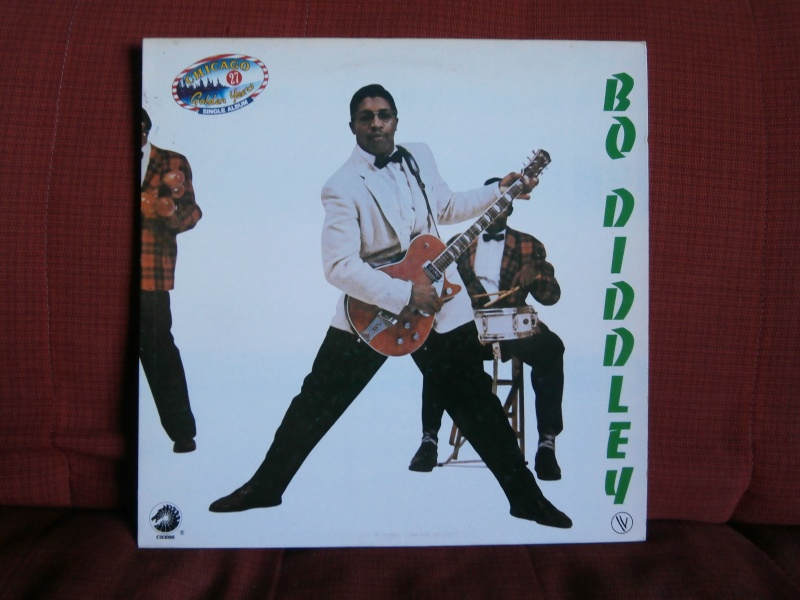 Les albums 33 tours classiques du rock des 1950's et 1960's - Classic Lp's of 1950's and 1960's rock P2190030