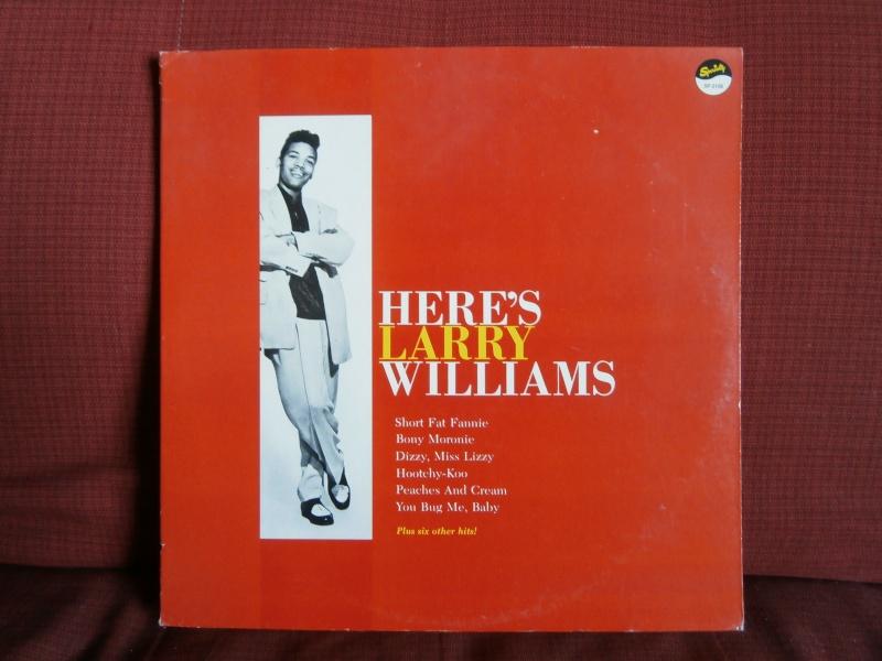 Les albums 33 tours classiques du rock des 1950's et 1960's - Classic Lp's of 1950's and 1960's rock P2190034