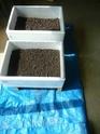 Préparation des semis, terre végétale et bétonnière… 1214