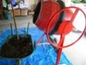 Préparation des semis, terre végétale et bétonnière… 714