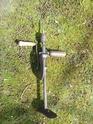 Extraire la sève d'un bouleau. P1270210