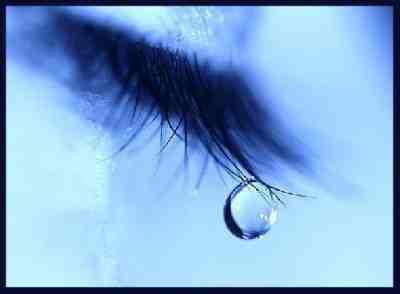 le temps n'Efface rien..... Juste le moment présent aide à vivre mieux Luna tu auras 3 ans d'ailes d'ange cet année le 17 mai 2013 je cite ton histoire qu'elle reste à jamais 18565011