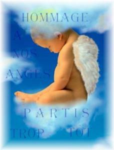 Musique et texte qui parle de nos ressentie de mamanges... ou des Anges Anges10