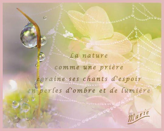 mon bébé d'amour Guillaume et mon Papa chéri - Page 3 Blogna10