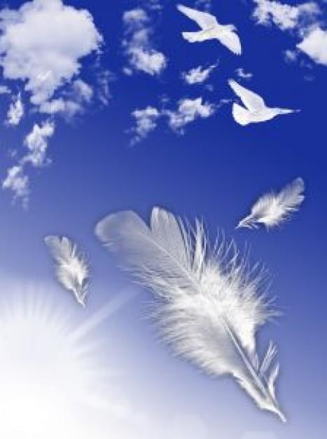 Musique et texte qui parle de nos ressentie de mamanges... ou des Anges Volee-10