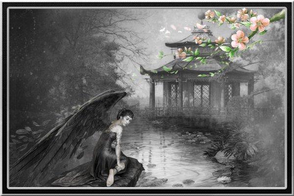 photos en noir et blanc - Page 9 12021610