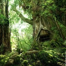 Les arbres Dans_l10