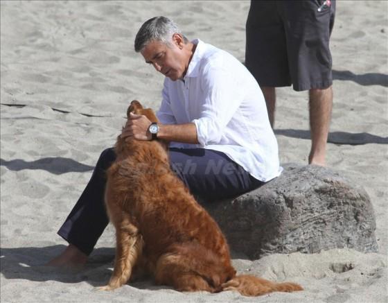 George Clooney George Clooney George Clooney! - Page 13 Georg311