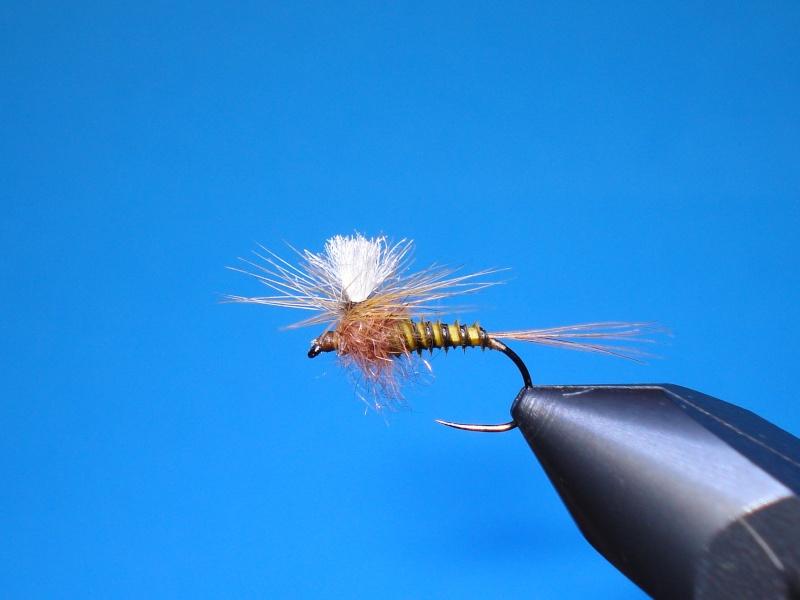 Certains pêchent, d'autres montent... Dsc00710