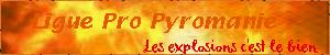 Ligues : bannières & icônes Ligue11