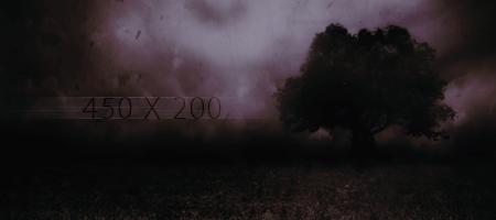 Modelo de Post Exiliu10