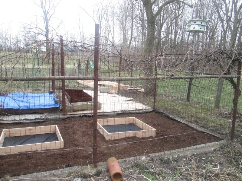 My Rusty Garden Img_0110
