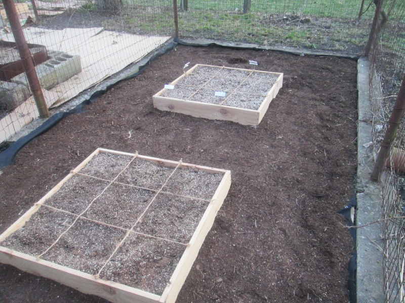 My Rusty Garden Img_0116