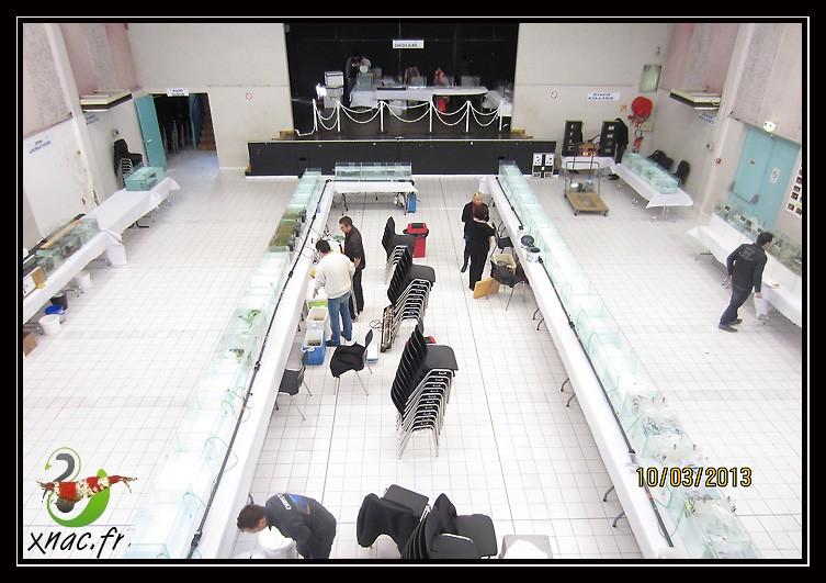 Bourse de Viviers (07) le dimanche 10 mars 2013 Img_0611