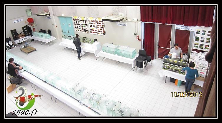 Bourse de Viviers (07) le dimanche 10 mars 2013 Img_0612