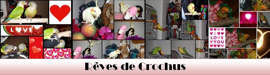 Rêve de Crochus