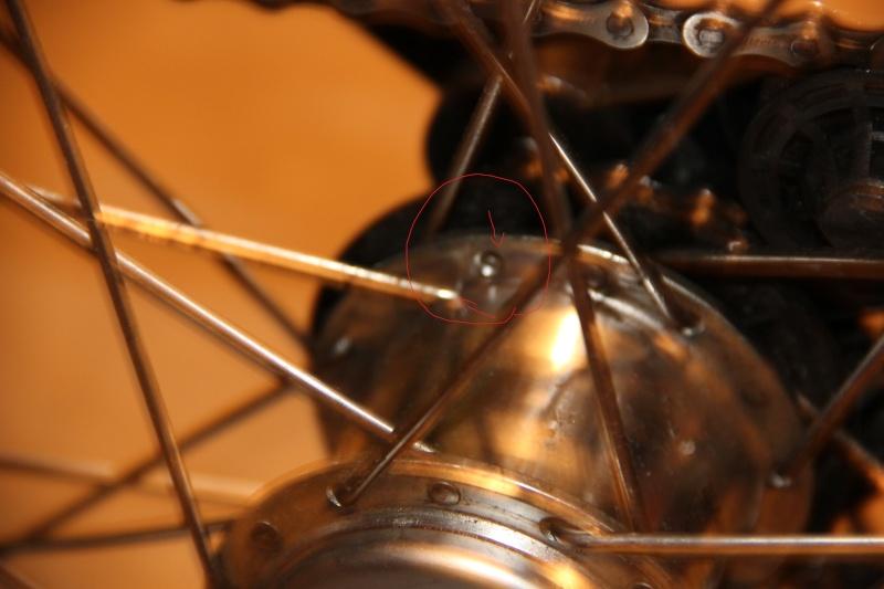 Rayons cassés + début roue voilée  Img_6312