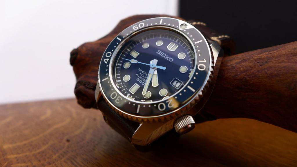Une montre pour survivre P1010910