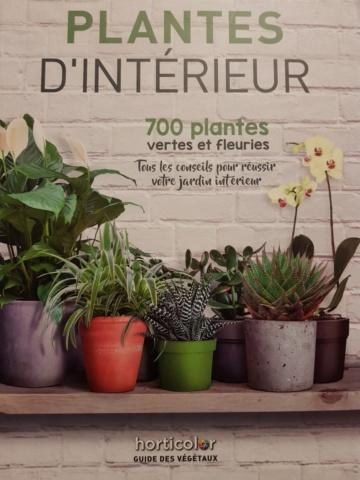 plantes d'intérieur de chez horticolor 20201110