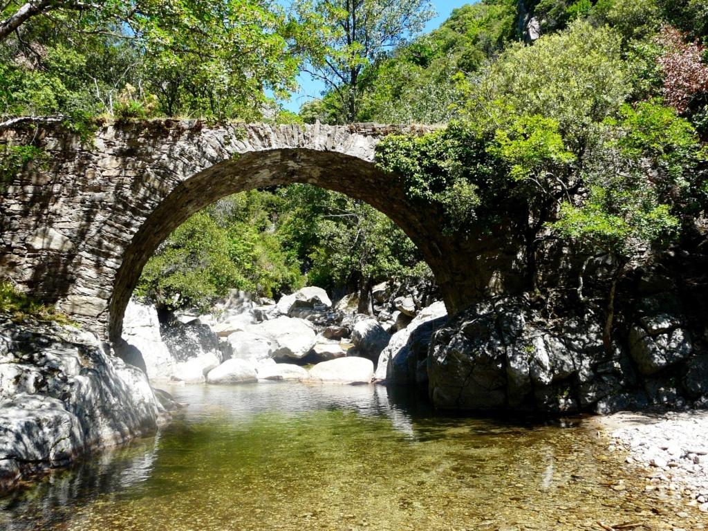 Occitanie - (MàJ 20/05) Sortie pour aller voir la Passerelle de Mazamet jeudi 21  Gorges10