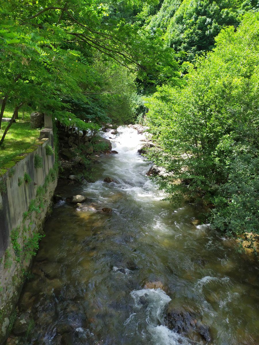 Occitanie - Sortie : Passerelle de Mazamet et ville de Hautpoul le jeudi 21  Img_2020